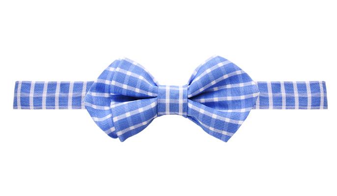 Bräutigamaccessoires Fliege, sportlich modern, weiß-blau kariert